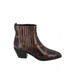 boots-ash-python